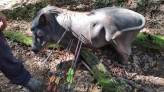 VI Trofeo Kiowa de Recorrido de Bosque 3D261014 (12)