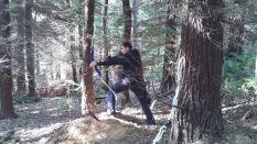 VI Trofeo Kiowa de Recorrido de Bosque 3D261014 (18)