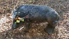 VI Trofeo Kiowa de Recorrido de Bosque 3D261014 (2)