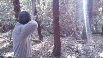 VI Trofeo Kiowa de Recorrido de Bosque 3D261014 (25)