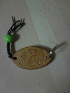 VI Trofeo Kiowa de Recorrido de Bosque detalle entregado por la organizacion (1)