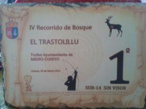 trastolillu29032015 (1)