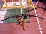 XVIII TROFEO SAN ANDRES2015 (15)