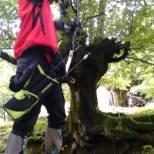 campeonato-de-euskadi-de-bosque-3d-2016-29