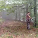 campeonato-de-euskadi-de-bosque-3d-2016-8