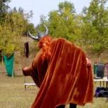 xiv-t-medieval-arco-lagunak2016-39