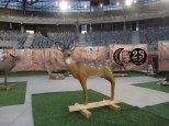I trofeo Vitoria indoor 3d 240218 (19)