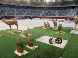 I trofeo Vitoria indoor 3d 240218 (26)
